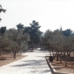 This is past the Qubbat Suleiman Pasha facing East